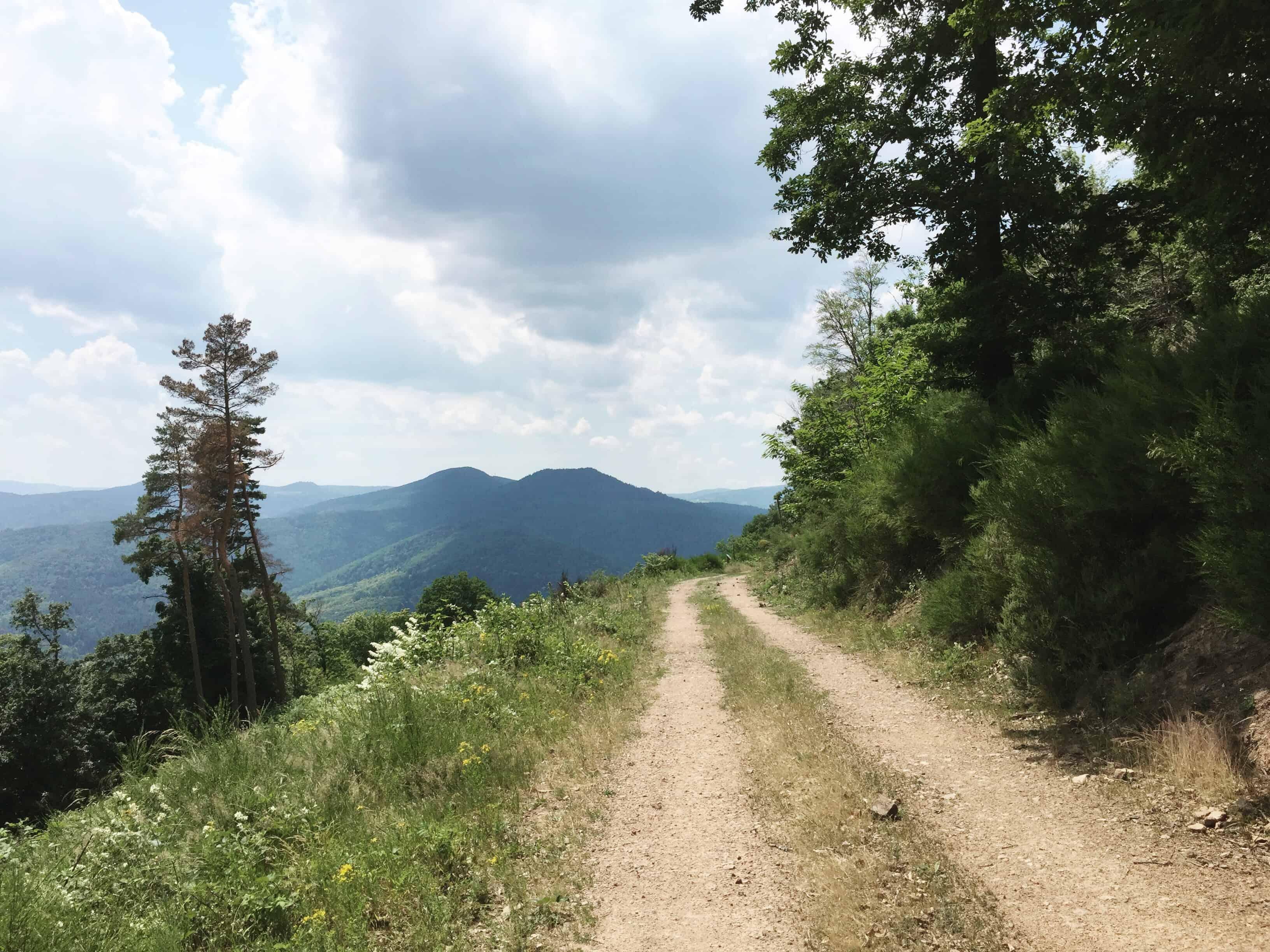 hiking in kaysersberg