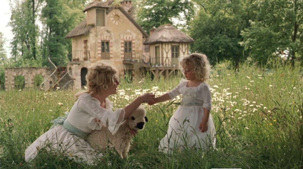 marie antoinette wildflowers