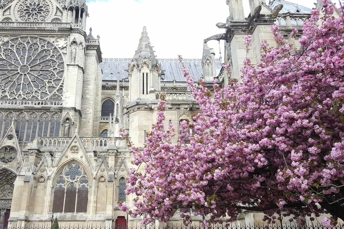 Instagram Paris spring